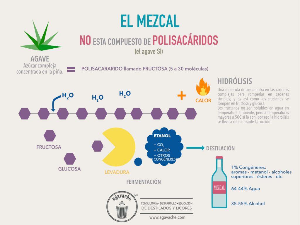 El mezcal NO contiene polisacaridos. Los agaves SI.