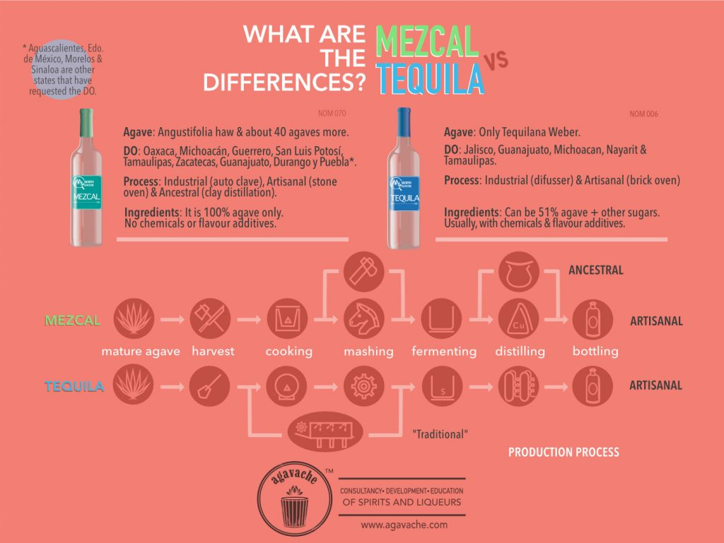 Differences between Mezcal and Tequila